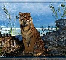 Bengal Tiger (1) - Month at a Glance 2009 calendar by Lisa  Weber