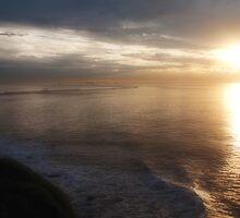 Breaking Dawn by Megan Martin