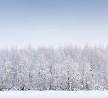 Cold Fusion by Juha M. Kinnunen