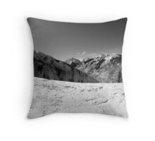 Scene Throw Pillow