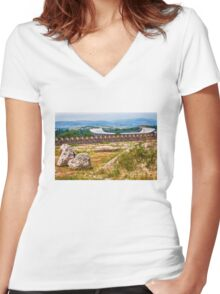 Stadium Landscape Women's Fitted V-Neck T-Shirt