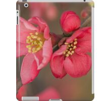 pink flowers in bloom on tree iPad Case/Skin