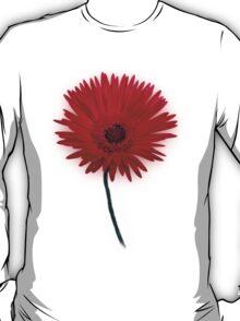 Painted Daisy T-Shirt