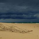 Berfore the Storm by deannedaffy