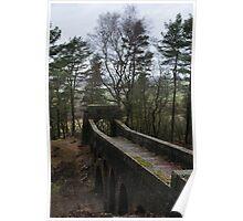 Treeline Bridge Poster
