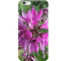 "Symmetry of Pink Flowers - Hebe ""Great Orme"" iPhone Case/Skin"