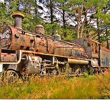 Needs Some Work - Zig Zag Railway - The HDR Experience by Philip Johnson