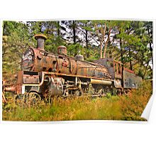 Needs Some Work - Zig Zag Railway - The HDR Experience Poster