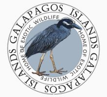 Galapagos Islands Night Heron by Zehda