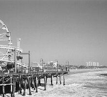 Santa Monica Pier by PonyBlack