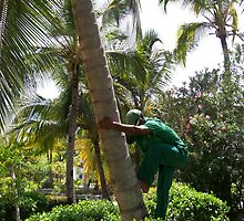 The coconut climbing business by WaleskaL