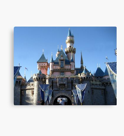 When you wish upon a star... Canvas Print