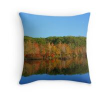 Fall In the Finger Lakes Throw Pillow