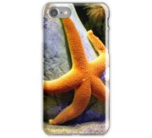 Cool starfish iPhone Case/Skin