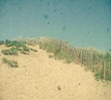 Sand Dunes by Cassia