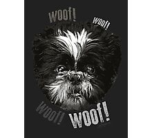 Shih-Tzu Says Woof! Woof! Photographic Print