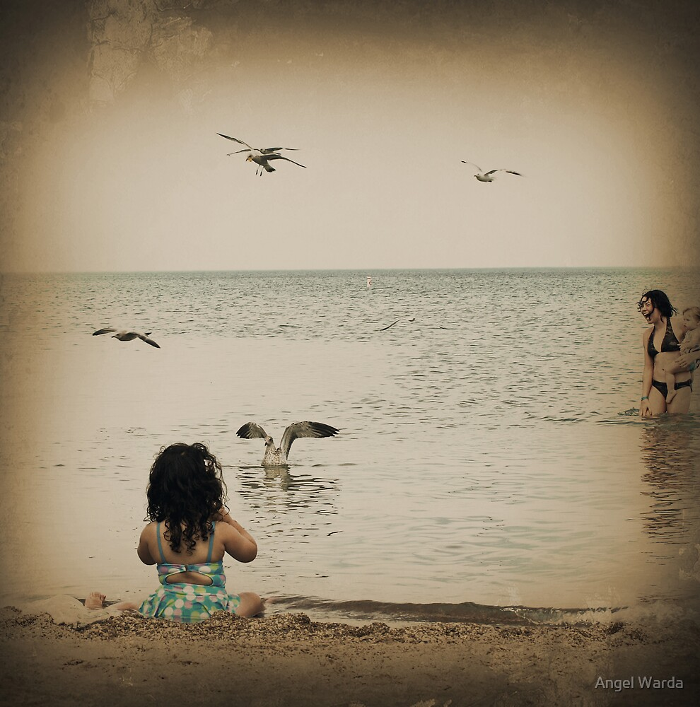Here come the seagulls by Angel Warda