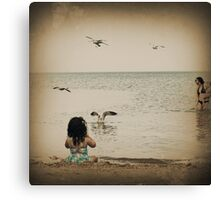 Here come the seagulls Canvas Print