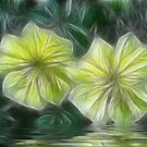 Morning Glory Fractalius by Glenna Walker