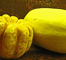 A Study of Squash © by jansnow