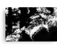 Smoke scroll  Canvas Print