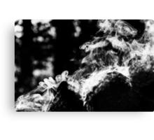 Smoke scroll  Canvas Print
