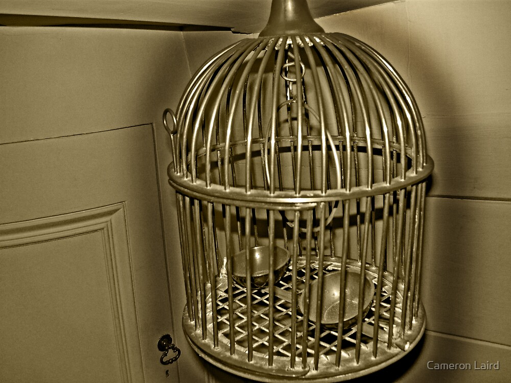 Bird Cage by Cameron Laird