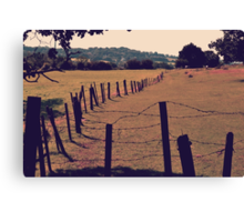 Vintage Fence and Field Canvas Print
