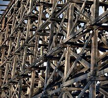 Trestle Rail Bridge by John Fletcher