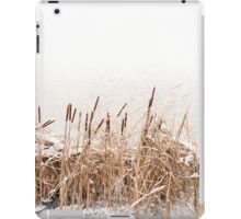 Snow on Typha reeds and frozen water  iPad Case/Skin
