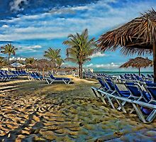 Peaceful Morning Beach by Vickie Emms