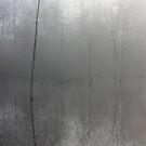cold mist by regina