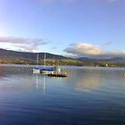 The Derwent River - Hobart Tasmania, Australia by Lee Popowski