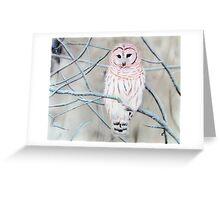 Cold Morrning Greeting Card