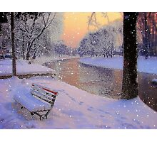 Winter bench.. Photographic Print