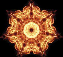 Flower Explosion by BorisBurakov
