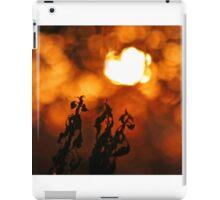 Inferno iPad Case/Skin