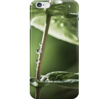branes iPhone Case/Skin