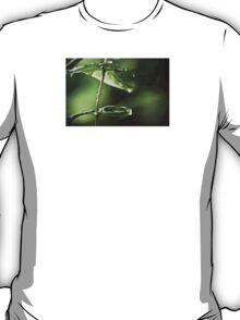 branes T-Shirt