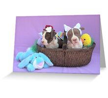 Easter Puppies Greeting Card