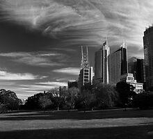 Sydney Botanical Garden & Skyline Monochrome by MiImages
