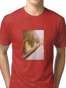 Sunny grape street Tri-blend T-Shirt