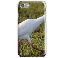 Egret on the Hunt iPhone Case/Skin