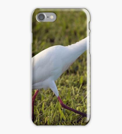 Egret on the Hunt iPhone Case/Skin