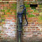 Old Water Pump by hootonles