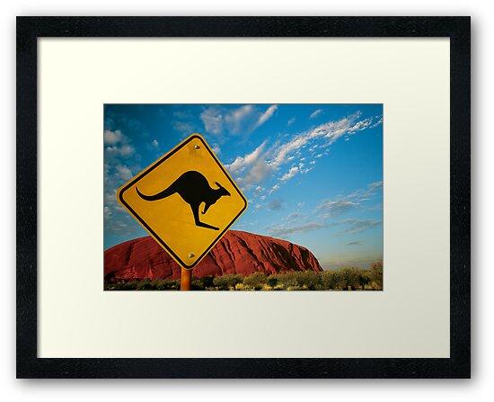 kangaroo rock by sumners