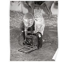 Cat with a Camera, 1936 Poster