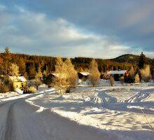 A Little Village #1 by MarianaEwa