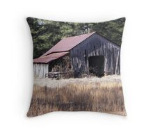 slumbering winter Throw Pillow