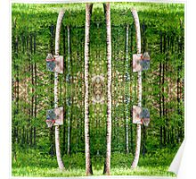 Basketball Forest Court Reflection 2 Poster